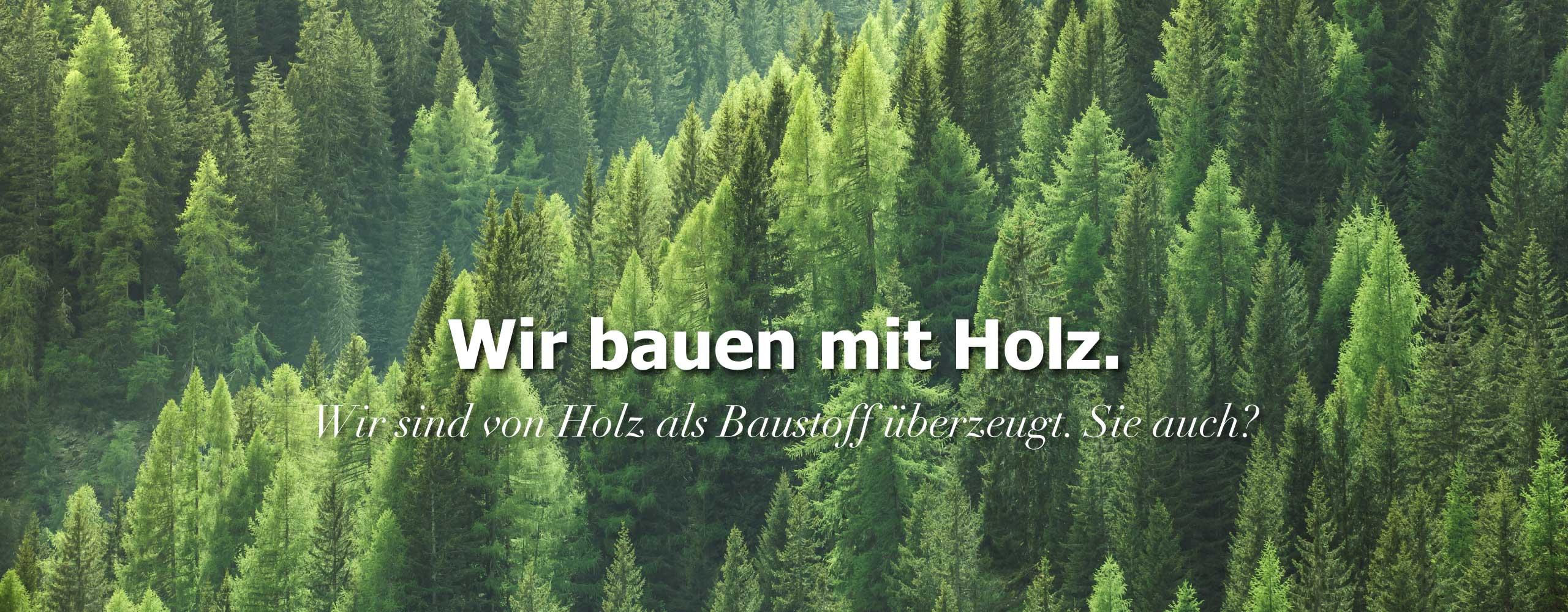 Holzbau Bauen mit Holz Holzhaus Zimmerei Mohr Leutershausen