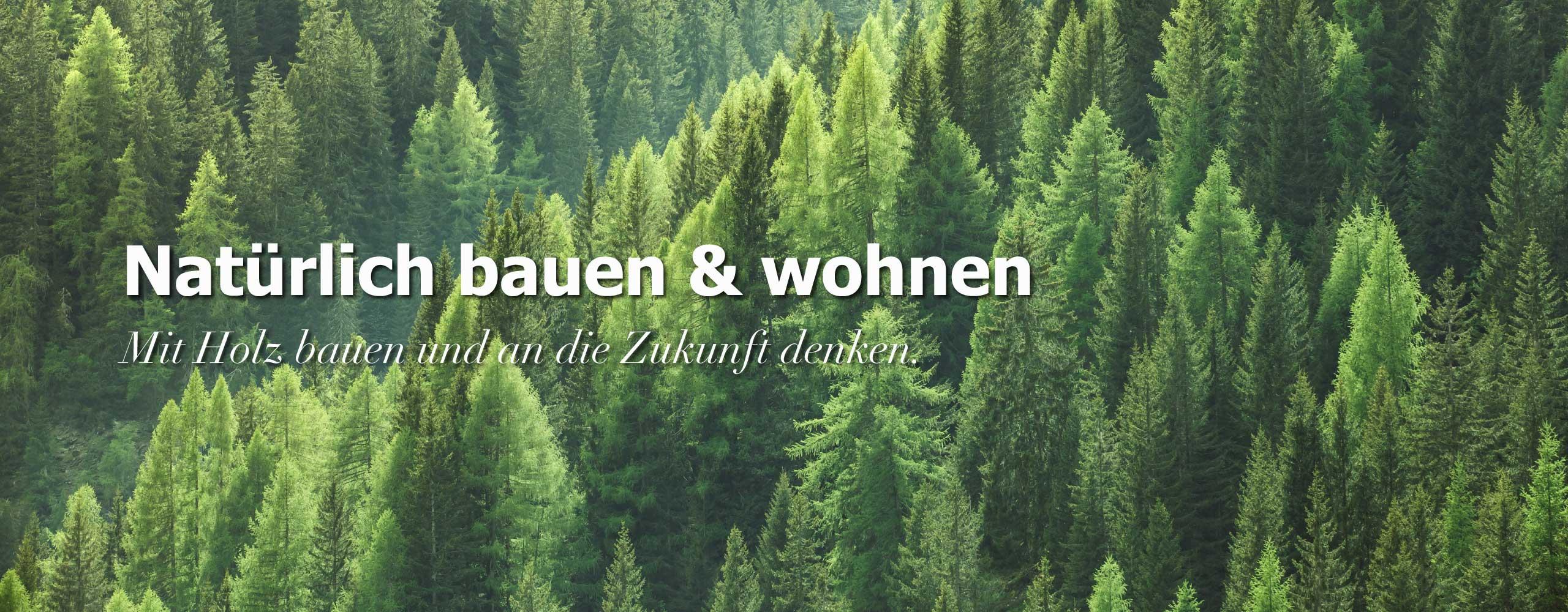 Holzbau und Vorteile eines Holzhauses